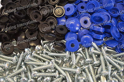 1000 X Number Plate Car Fixing Fitting Kit Screws Blue & Black Hinged Caps