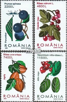 Romania 5567-5570 (complete.issue.) unmounted mint / never hinged 2001 Berries