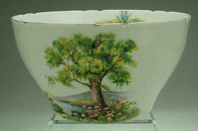 Antique Cranberry Bowl in Woodland by Shelley Pattern 13348 VA104