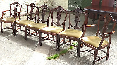 A Wonderful Set Of Six Vintage Mahogany Dining Chairs, In The Georgian Style.