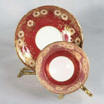 Aynsley Teacup & Saucer - White/red Gilded Designs With White Flowers