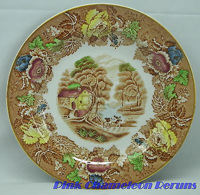 """Wood & Sons England ENGLISH SCENERY LIGHT BROWN Multicolor Salad Plate 7 7/8"""""""
