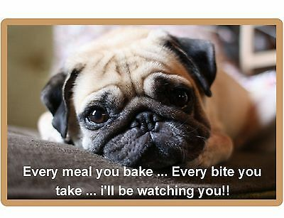 Funny Fawn Pug Dog Watching You  Refrigerator / Tool Box Magnet Gift Card Insert
