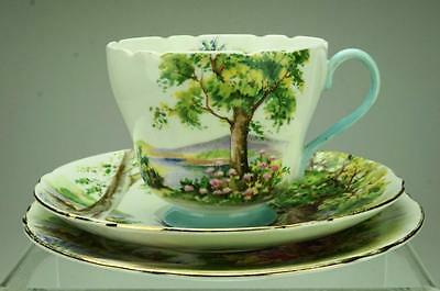 Antique Shelley Trio Woodland Cup, Saucer & Side Plate Pattern 13348 VA126