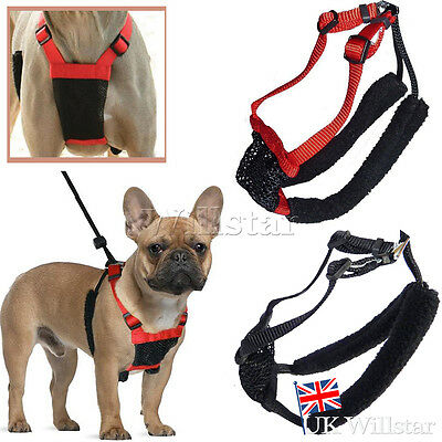 New UK Soft Adjustable Pet Puppy Non Pull Padded Dog Harness Vest  Small Medium