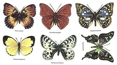6 Butterfly Butterflies Select-A-Size Waterslide Ceramic Decals Bx