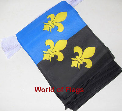MONMOUTHSHIRE FLAG BUNTING  9m 30 Monmouth Fabric Party Flags Welsh Wales County