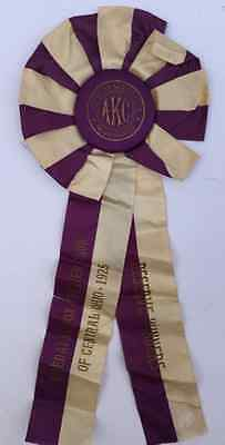 Antique 1925 American Kennel Club Airedale Fox Terrier Club Ohio Dog Show Ribbon