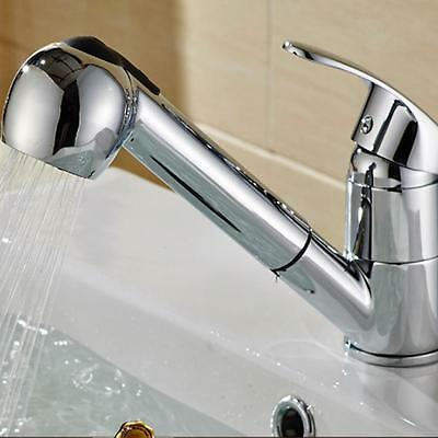 Commercial Stainless Steel Single Handle Pull Out Sprayer Kitchen Sink Faucet