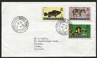 BELIZE: (13267) fish/GALES POINT cancel/cover