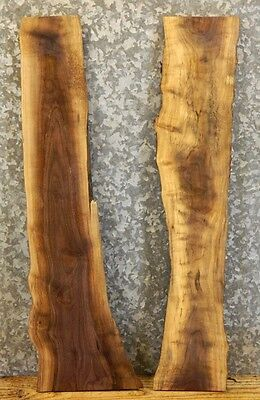 2- Reclaimed Live Edge Black Walnut Craft Pack/Taxidermy Base Slabs 5221,5235