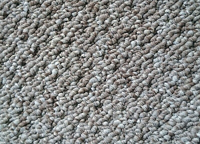 Cheap Room Size Carpet Roll $12 Sqm Cream Colour  for Rental Property