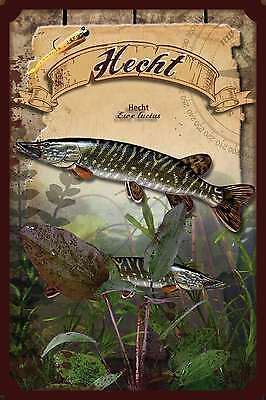 Tin sign - Pike Esox Lucius FISHING BLINKER RUBBER FISH 20x30 cm 23062