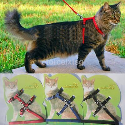 Cat Walking Lead Leash Adjustable Nylon Harness Collar For Pet Kitten Rabbit New