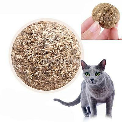 1X Fashion Pet Kitten Cat Mint Ball Play Toys Ball Coated With Catnip Bell Toy