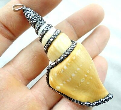 Beautiful Beach Freshwater Shell  conch  Gemstone PENDANT necklace c5