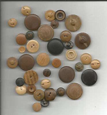 Vegetable Ivory Lot-38 Buttons Mixed Sizes