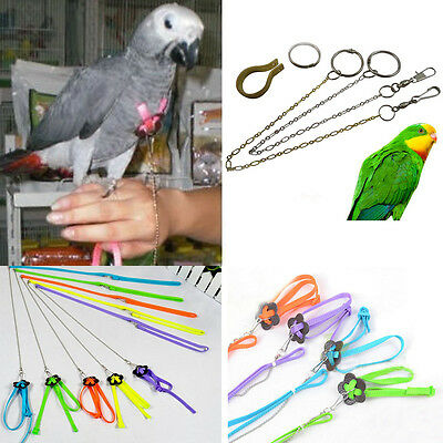 Soft Chain Birds Pet Harness Parrot Anti-Bite Anklet Soft Adjustable Leash