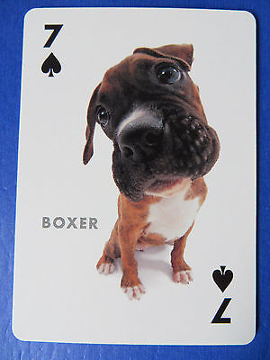 Boxer Dog Puppy Luggage Tags Pair - Set Of 2 - Name Bag Trip Id