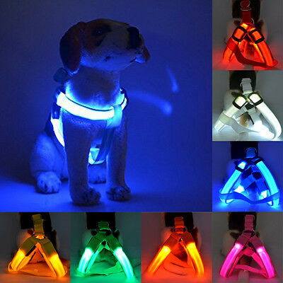 Pet Dog LED Harness Belt Glow Nylon Chest Collar Tether Night Safe Clothes Decor