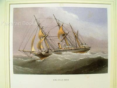 Antique Colour Lithographic Print HMS Wild Swan Victorian Ships Of Royal Navy