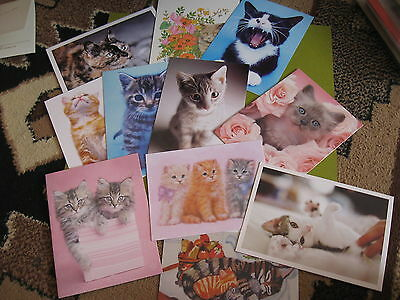 cat cards & post cards lot 9 cards + 2 postcards (free ship $20 min)