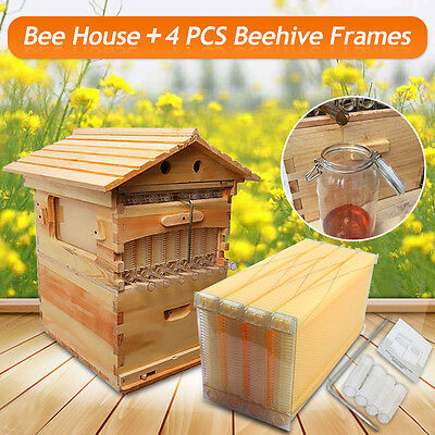 Personal Home Beehive Wooden House + 4 PCS Beekeeping Auto Flow Honey Frames