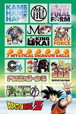 DRAGONBALL Z  INFOGRAPHIC POSTER New Rolled Poster 24x36