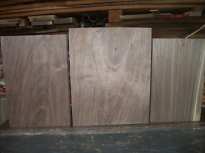 3 Pc Walnut Lumber Wood Air Dried Board Lot 1002A Carving Blocks Game Calls