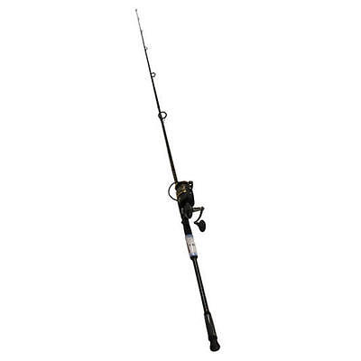 Penn 1338233 Battle II Combo 10' Heavy 2 Piece BTLII8000102H/BTLII8000 Fishing