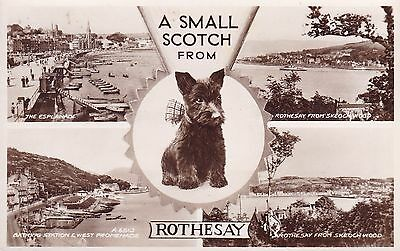 Rothesay, Bute - Real Photo Multi View By Valentine's
