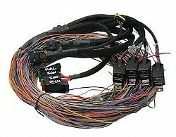 Haltech PS2000 Autospec Flying Lead Harness Loom Only -Long