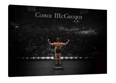 Conor McGregor 30x20 Inch Canvas - UFC Framed Picture Print Wall Art