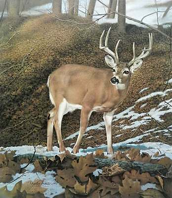 Charles Frace' Majesty White Tailed Deer Buck in the Snow S/N Limited Edition