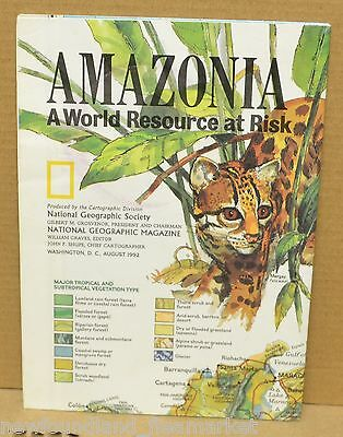 Amazonia A World Resource At Risk 1992 National Geographic Folded Map