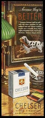 1943 Clumber Spaniel with pheasant art Chelsea cigarettes vintage print ad