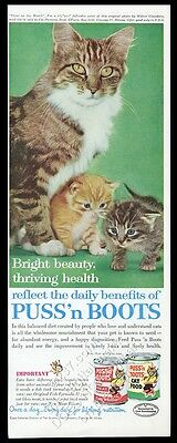 1962 cat & CUTE kitten color photo Puss N Boots cat food vintage print ad