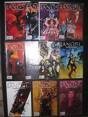 ANGEL (BUFFY) : AFTER THE FALL : COMPLETE RUN of ISSUES 1,2,3,4,5,6-11. IDW.2007