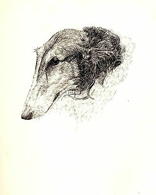 1935 Antique BORZOI Print Vintage Russian Wolfhound Gift for Dog Lover CFW 1727