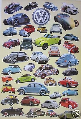 """AUTOMOBILES """"VW BEETLES THROUGH THE YEARS"""" POSTER - Collage of 39 VW Beetles"""