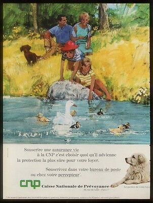 1968 Great Pyrenees dog photo CNP French print ad