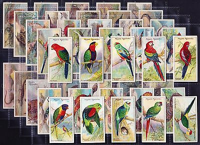 John Player NATURE SERIES 1909 Set Of 50 *VG Condition*