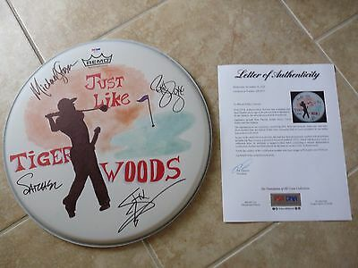 """Steel Panther Just Like Tiger Woods Signed Autograph 14"""" Drumhead PSA Certified"""