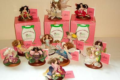 ~12 Paradise Galleries Patricia Rose Little Flower Fairies in Original Boxes~