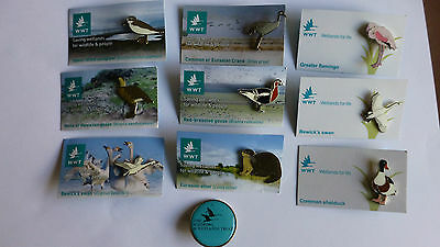 A Nice Collection Of 10 Wwt The Wildfowl & Wetlands Trust Badges.