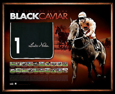 Black Caviar Limited Edition Hand Signed Framed Official Saddlecloth Nolen Moody