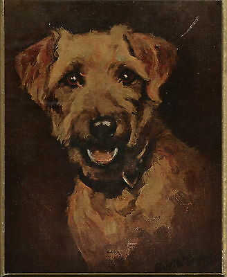 Working Terrier Dog Print On Thick Board