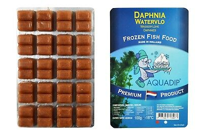 18 x Daphnia 100 gram Blister Packs - Premium Frozen Fish Food