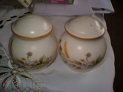 SALT AND PEPPER PAIR SUBA = SEAL FLOWERS ON THE SIDES BOTH 3ins TALL 9ins CIRCUM