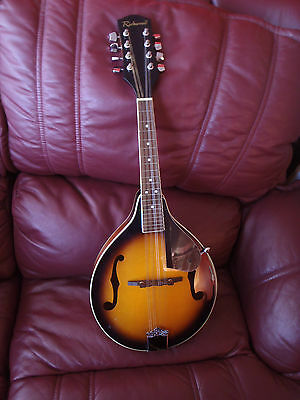 Richwood Mandolin In A Padded Case With A Instruction Book Excellent Condition